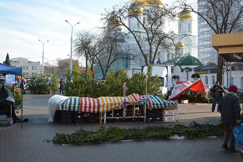 Елки-палки: власти Ростова закрыли 13 незаконных елочных базаров