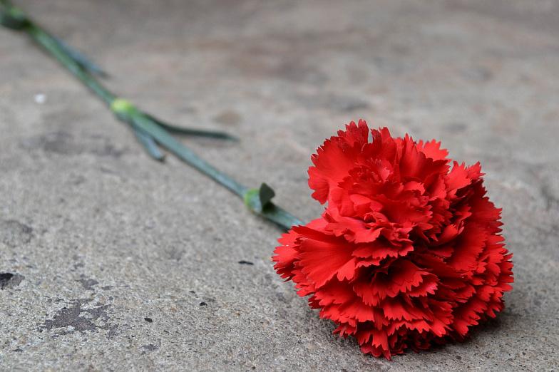 Мемориальная доска народному артисту СССР Михаилу Бушнову появилась вРостове